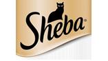 sheba157